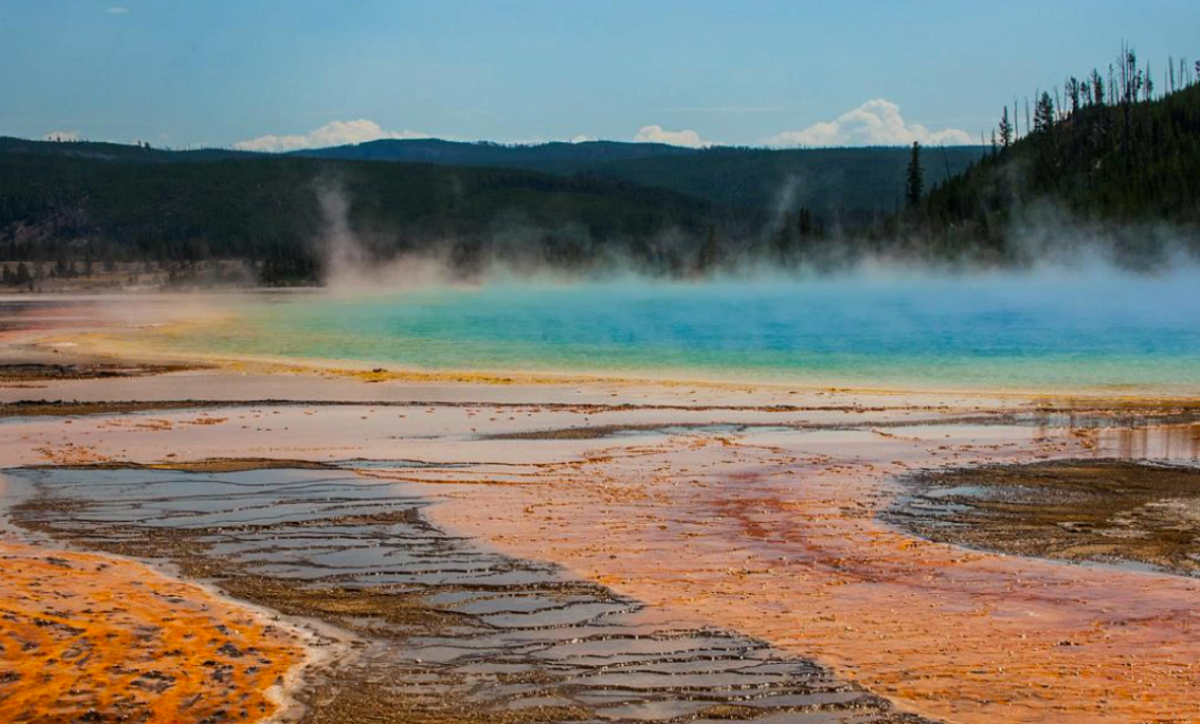 A Walk Through Yellowstone
