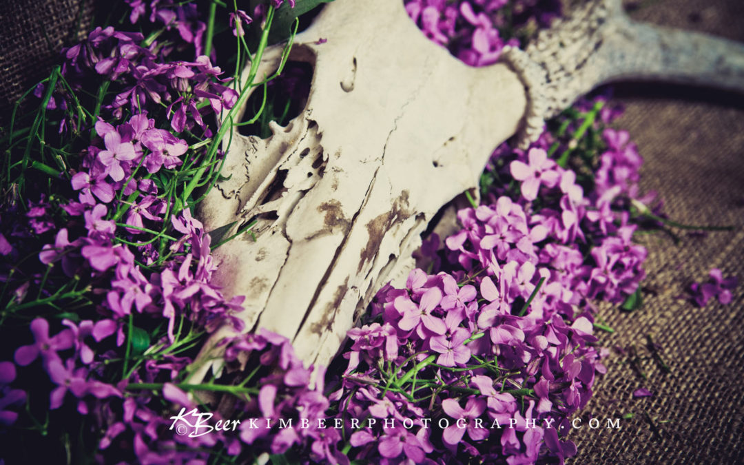 Deer Skull with Purple Wildflowers